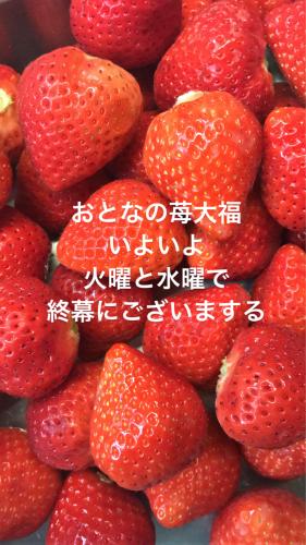 d0097644_11000070.jpg