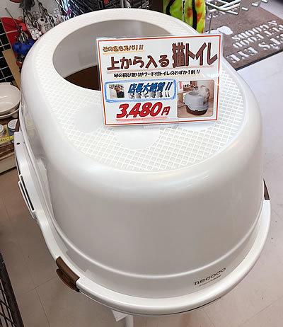 店長大絶賛!! の猫トイレ_e0362456_16191574.jpg