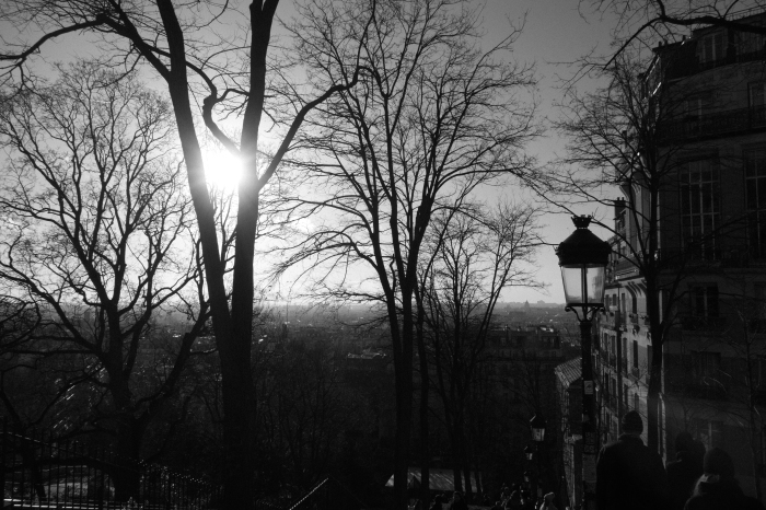 morning sunlight_d0349265_11220417.jpg