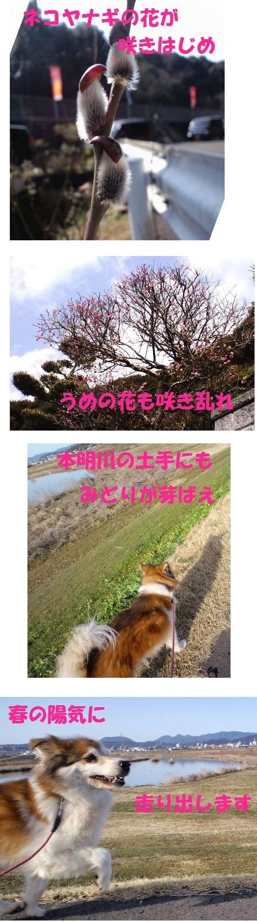 c0025171_01183954.jpg