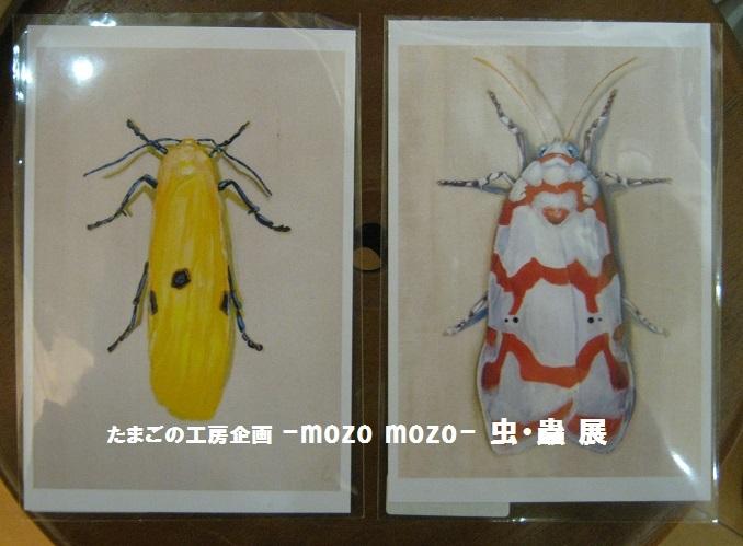 たまごの工房企画 -mozo mozo- 虫・蟲 展 その5_e0134502_17592750.jpg