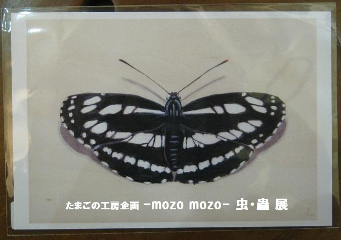 たまごの工房企画 -mozo mozo- 虫・蟲 展 その5_e0134502_18001212.jpg