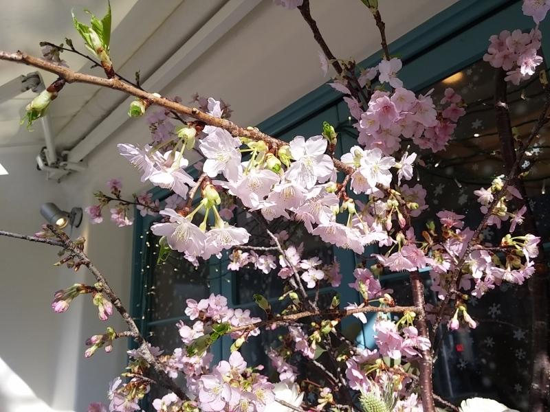 春に向けて準備☆_f0372313_08251099.jpg