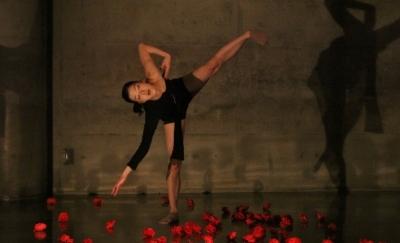 Step Upの成果見せた「ダンス花」公演終わる_d0178431_03220539.jpg