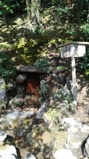 [京都旅行] 二日目 Aパート_a0054041_02144335.jpg