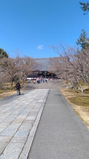 [京都旅行] 二日目 Cパート_a0054041_02532619.jpg