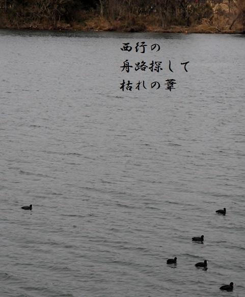 d0098541_08335720.jpg