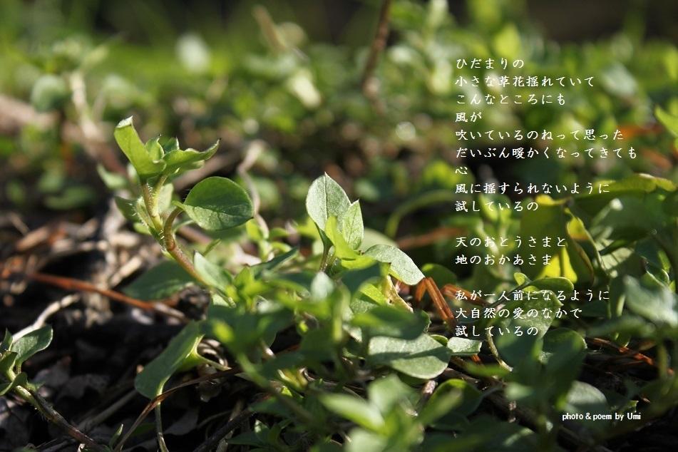 f0351844_16263964.jpg