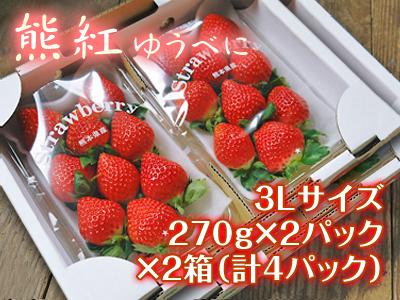 熊本イチゴ『熊紅(ゆうべに)』最旬です!美味しさにこだわり朝採り、即日発送で大好評販売中!_a0254656_18134105.jpg