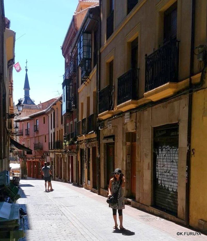 ルルドからサンティアゴへ巡礼の旅 最終回_a0092659_17062455.jpg