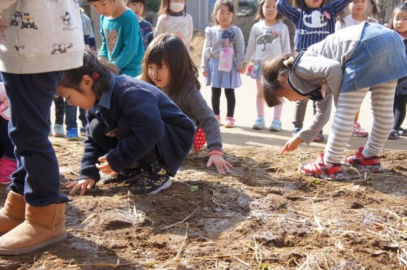年中組~畑の土づくりをしています!_f0356892_18265766.jpg