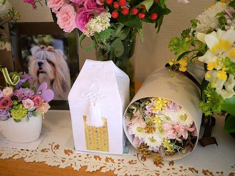 あゆみちゃんFとのパリの思い出とお花たち_c0090198_19111560.jpg