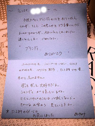 あゆみちゃんFとのパリの思い出とお花たち_c0090198_1953316.jpg