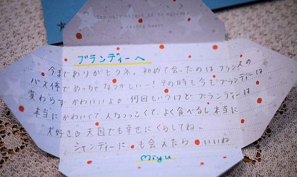 あゆみちゃんFとのパリの思い出とお花たち_c0090198_1955165.jpg