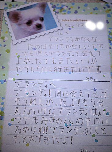 あゆみちゃんFとのパリの思い出とお花たち_c0090198_196374.jpg