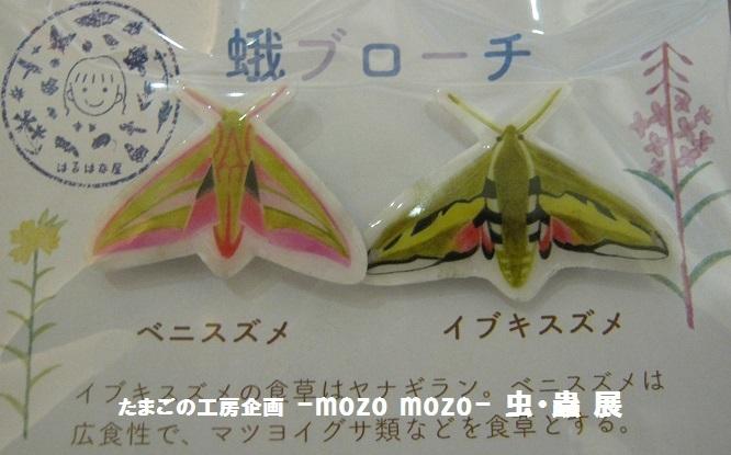たまごの工房企画 -mozo mozo- 虫・蟲 展 その6_e0134502_17025684.jpg