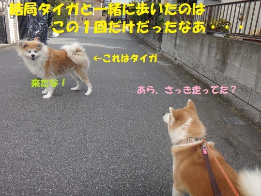 f0121712_08490907.jpg