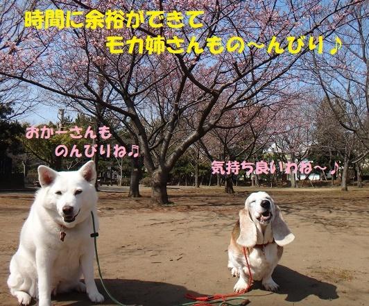 f0121712_09073689.jpg
