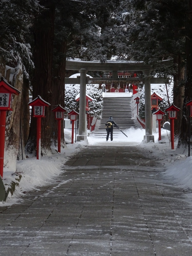 2月最後も除雪から_c0111229_19375482.jpg