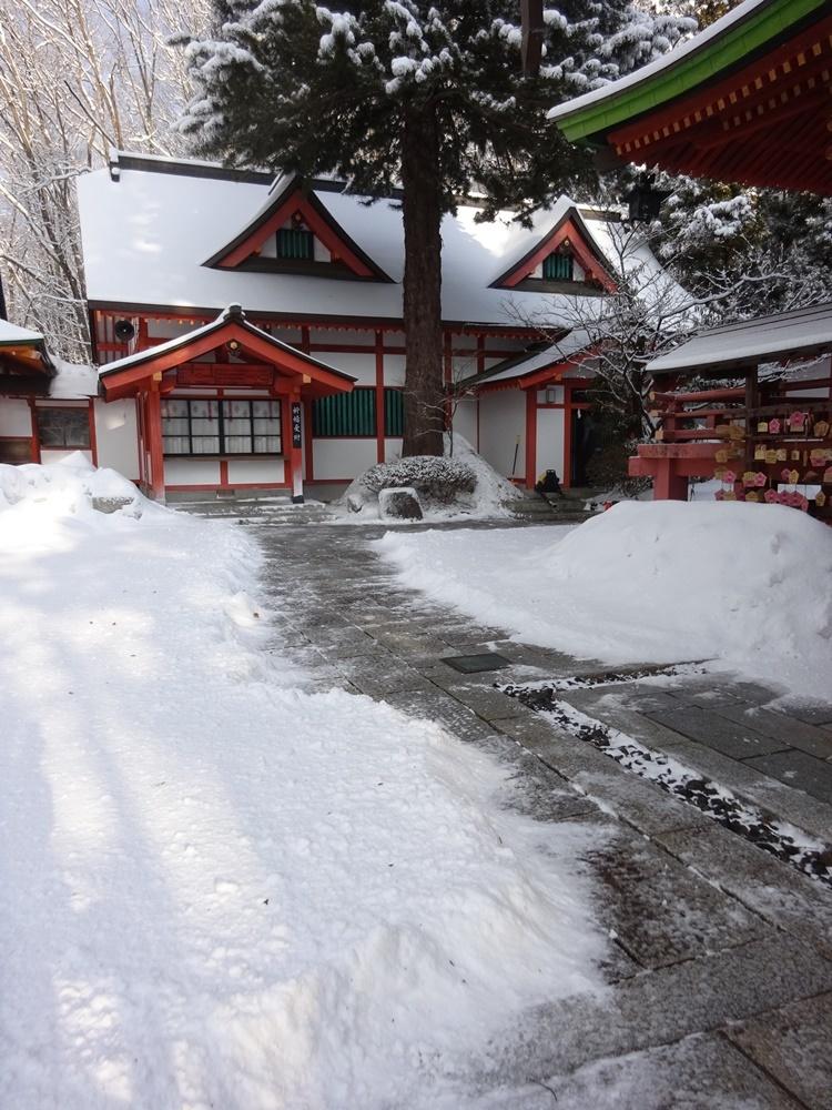 2月最後も除雪から_c0111229_19382898.jpg