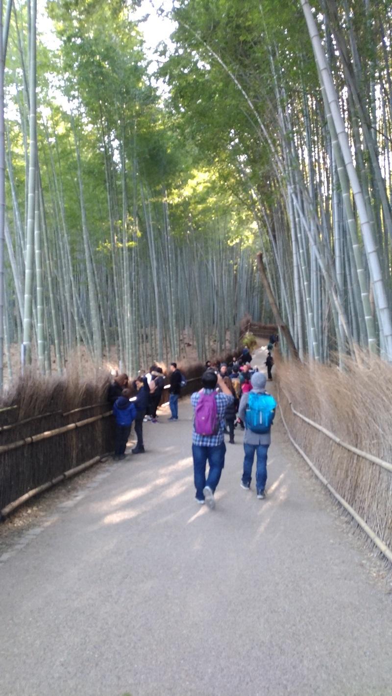 [京都旅行] 二日目 Eパート_a0054041_12384591.jpg