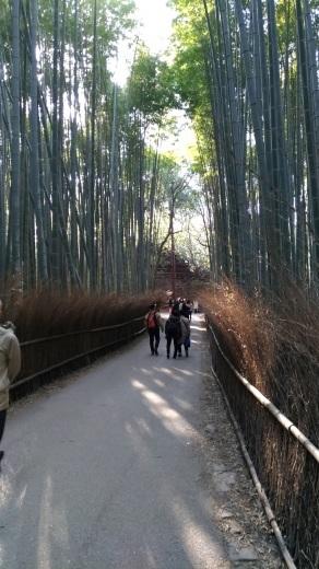 [京都旅行] 二日目 Eパート_a0054041_12401077.jpg