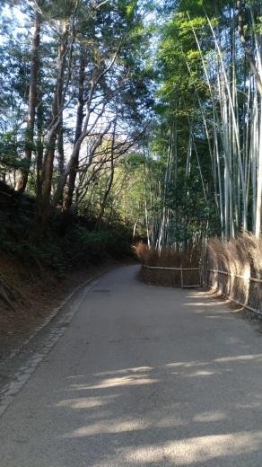 [京都旅行] 二日目 Eパート_a0054041_12404304.jpg