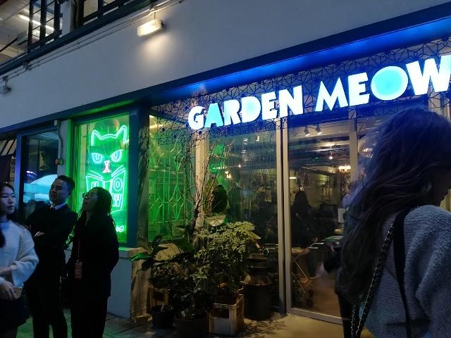 來喵一下Garden Meow_b0248150_10313310.jpg