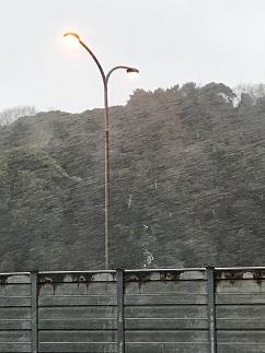 雪が降ってきました_b0214654_1817185.jpg