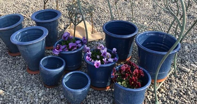 ウイッチフォードの鉢届きました・・・・塗り鉢の新色はブルー_b0137969_07454010.jpg
