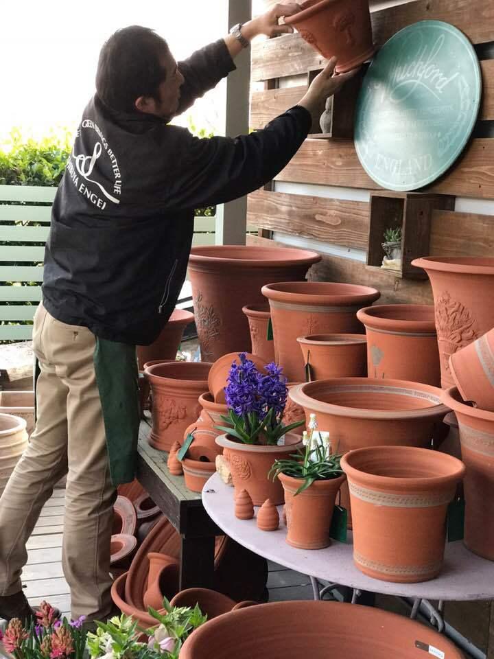 ウイッチフォードの鉢届きました・・・・塗り鉢の新色はブルー_b0137969_07463549.jpg
