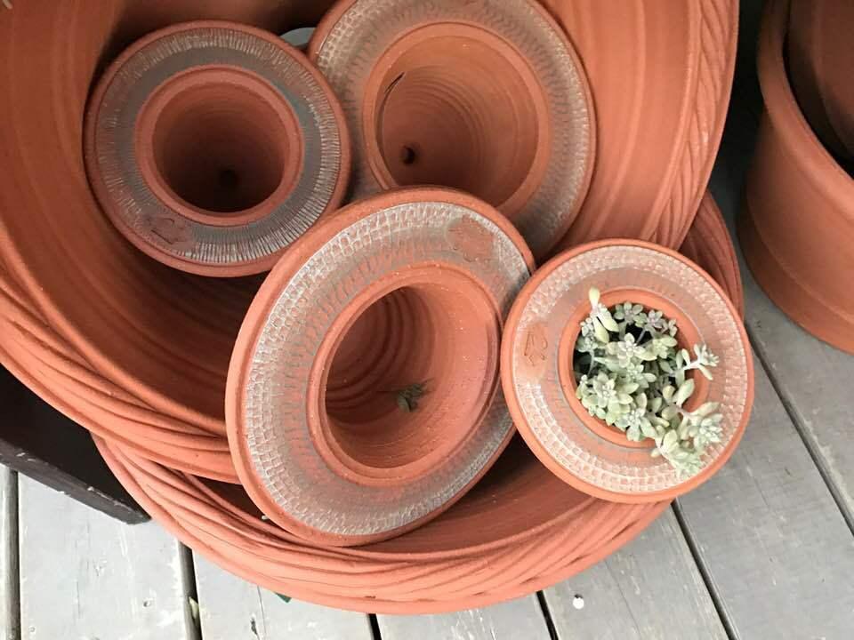 ウイッチフォードの鉢届きました・・・・塗り鉢の新色はブルー_b0137969_07503415.jpg