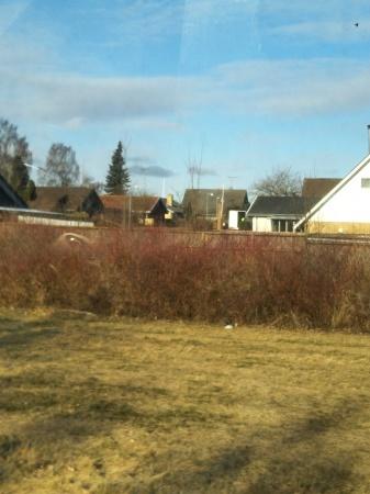 デンマークから_c0139773_13570997.jpg