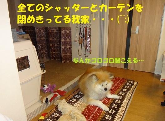 f0121712_07080367.jpg