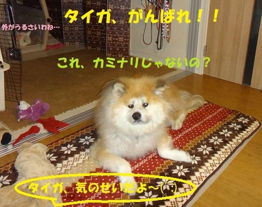 f0121712_07121957.jpg