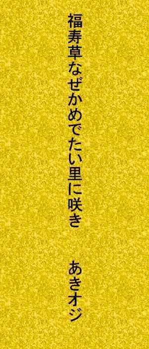 f0117041_15432910.jpg
