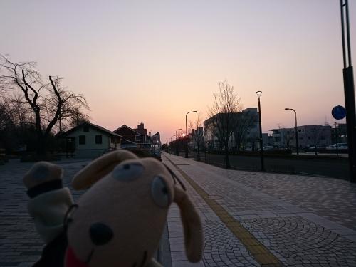 まだ早い春の朝_c0158573_07422334.jpg