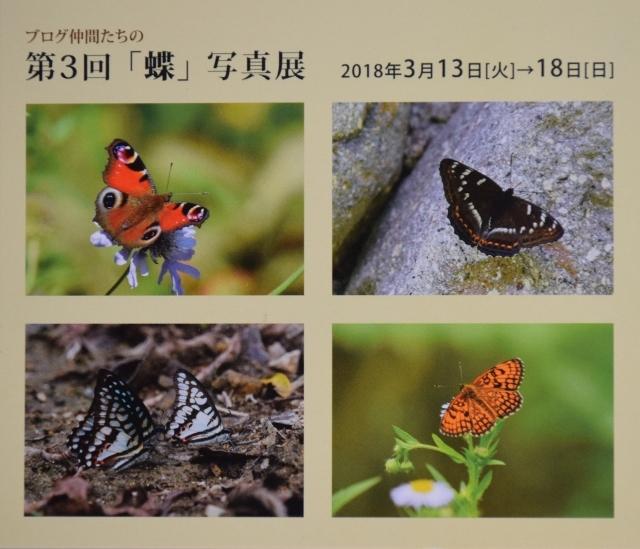 f0179175_20105147.jpg