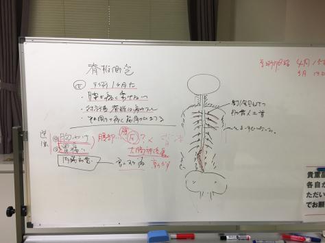 毎月の指圧治療技術研究会_a0112393_21044219.jpg