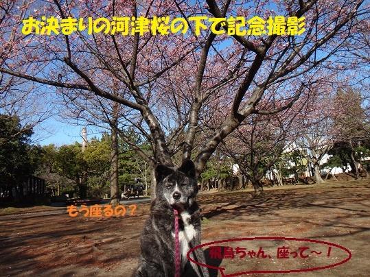 f0121712_14401422.jpg
