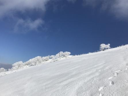 氷ノ山、ラッキーな山業!_f0101226_22183533.jpeg