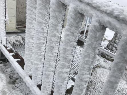 氷ノ山、ラッキーな山業!_f0101226_22191687.jpeg