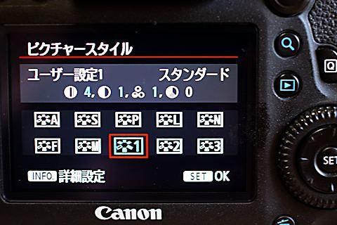 c0032138_20160099.jpg