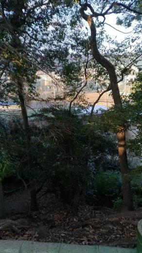 [京都旅行] 二日目 Fパート_a0054041_23371509.jpg