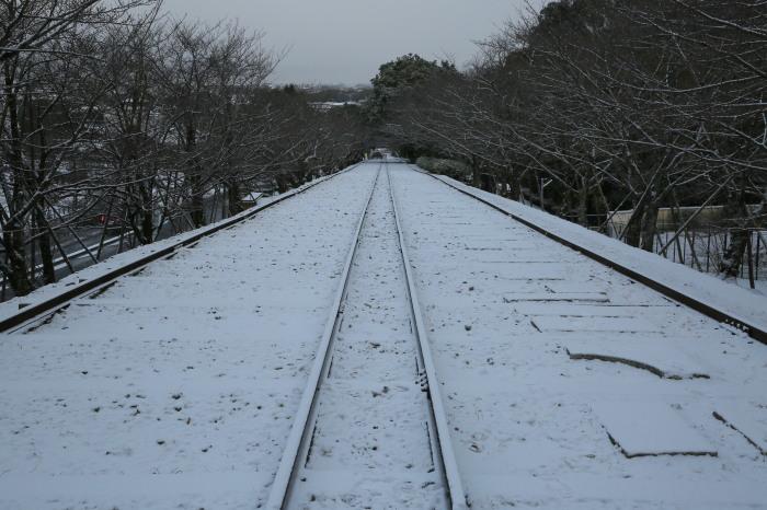 京都雪景色 2018_f0021869_22035305.jpg