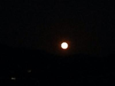 満月の満ちる喜び・溢れる優しさ***_e0290872_22092507.jpg