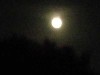 満月の満ちる喜び・溢れる優しさ***_e0290872_22095238.jpg