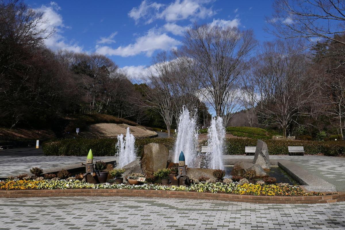 森林公園で梅見_c0252688_16401331.jpg