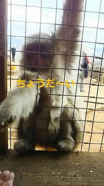 f0242002_13013572.jpg