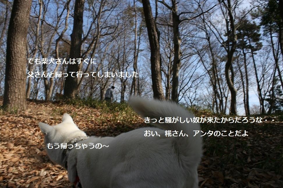 f0242002_17411680.jpg